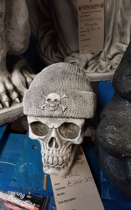 Skull in a Beanie Hat